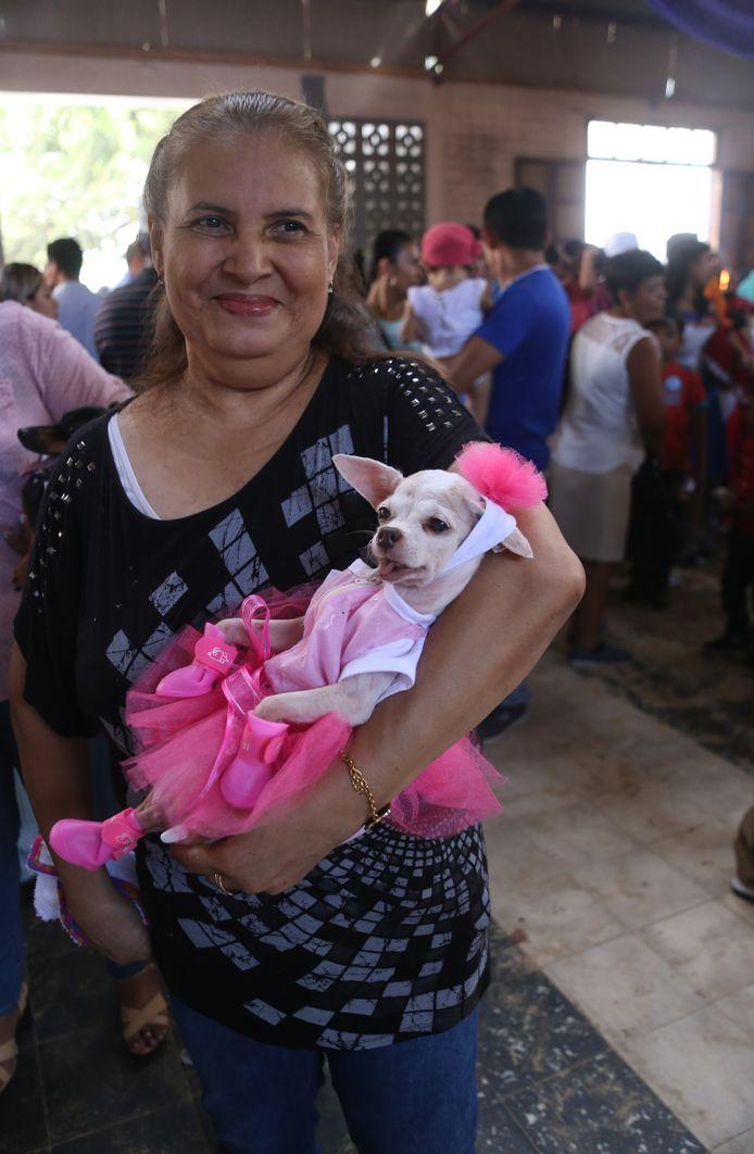 Foto ter illustratie. Een hond verkleed voor zijn verjaardag