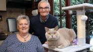 Jeannine en Eduard vieren gouden jubileum