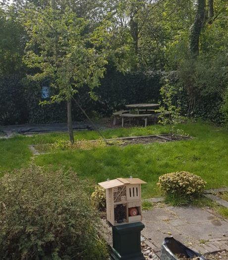 Tijmara moest het altijd doen met balkon, maar nu heeft ze eindelijk een tuin: 'Tijd voor meer groen'