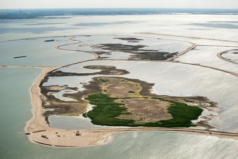 Het vernieuwde natuurgebied de Marker Wadden.  Beeld Hollandse Hoogte /  ANP