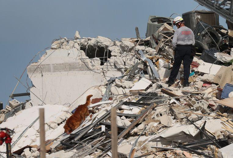 Een brandweerman zoekt naar overlevenden die nog onder het puin liggen. Beeld Getty Images