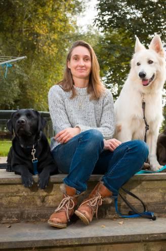 """""""Baasjes aaien hun hond te veel"""": gedragsspecialiste legt uit hoe je je viervoeter minder stress geeft"""