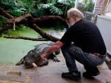 Lockdown treft ook de reptielen van Iguana