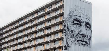 Nieuwe muurschilderingen op gebouwen in Goes