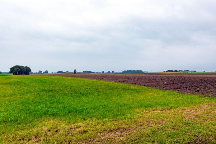 In dit gebied aan de noordkant van Wouw komt geen zonnepark. Al kan initiatiefnemer Kronos altijd nog bezwaar maken tegen dat besluit van de Roosendaalse gemeenteraad.