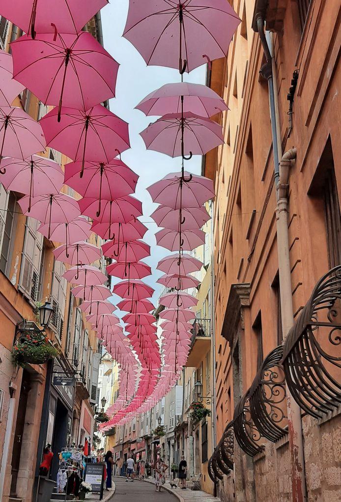 GEKLEURDE SLINGER GRASSE -  Myrna Pinxteren kwam al wandelend in dit gezellige winkelstraatje in Grasse in de Franse Alpen uit.