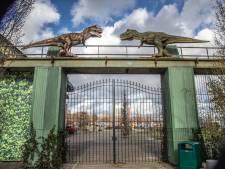 Corona kostte Dinoland Zwolle al twee miljoen: dino's verkopen om te overleven