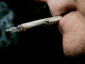 Dagwinkel in Ter Rivierenlaan maand gesloten wegens drugshandel onder de toog