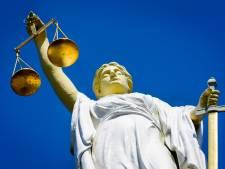 Man die zich met 'loeiharde vuistslagen' tegen aanhouding verzette moet schadevergoeding betalen