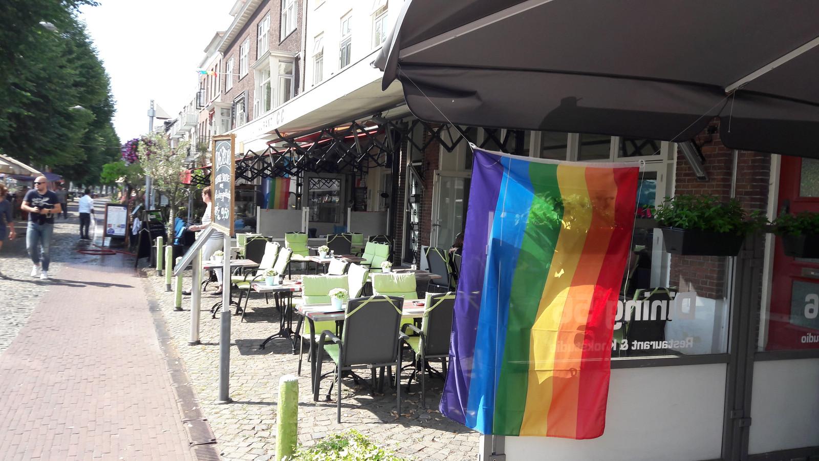 Regenboogvlaggen aan de Rijnkade.