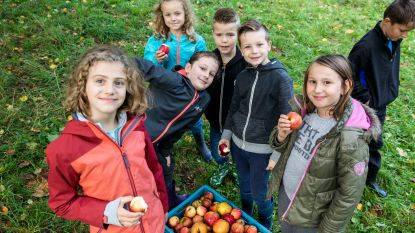 Zo'n 600 kinderen maken  sap van appelen en peren