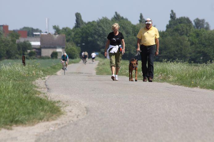 Altijd opletten als je het rondje Afgebrande Hoef in Zevenbergen wandelt. Is het niet voor auto's, dan wel voor fietsers.