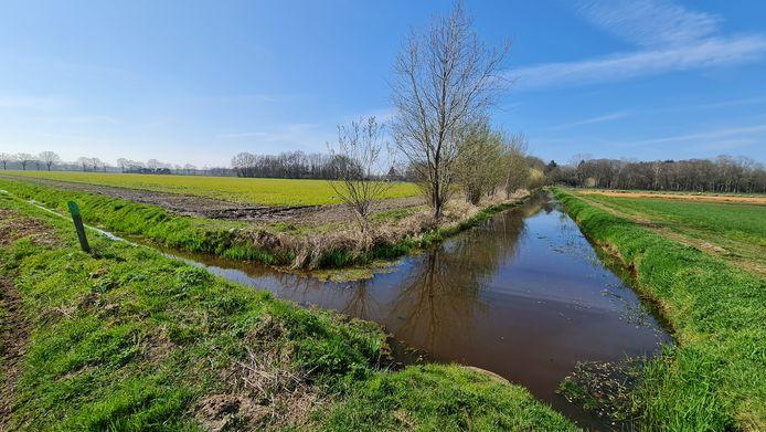 De weilanden tussen Handel, Boekel en Elsendorp.