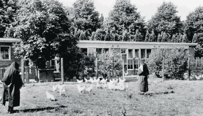 Zusters voeren de kippen bij het hoenderverblijf op de abdij in Berkel-Enschot.