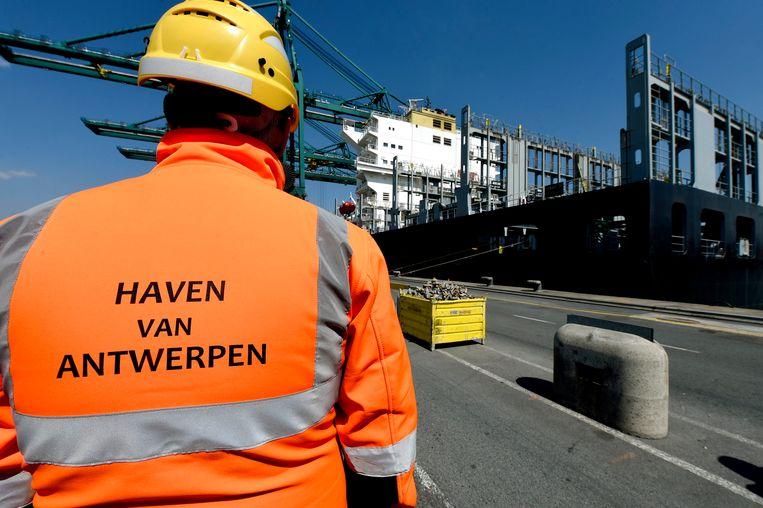 In de haven van Antwerpen werd woensdag nog 1.000 kilo cocaïne gevonden tussen bananen (Illustratiebeeld). Beeld Photo News