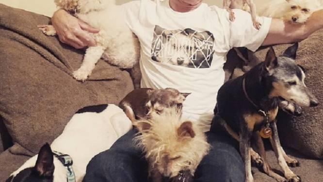 Dierenvriend adopteert oude honden om hen nog een goede oude dag te geven