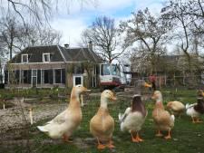 Ooit was Willem van Oranje eigenaar, nu ondergaat buitenplaats Jaarsveld een metamorfose: 'Het wordt zo mooi'