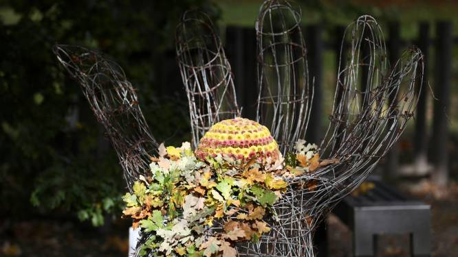 Japanse Tuin zet thema oneindigheid centraal tijdens Chrysantenfestival