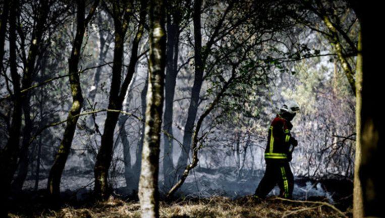 Door een brand in het natuurgebied Fochteloerveen is gisteren een gebied van tientallen hectares heide in vlammen opgegaan. Foto ANP Beeld