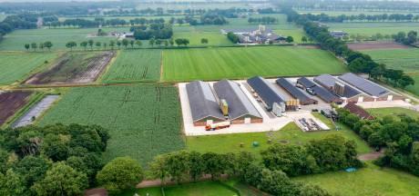Wat te doen met botsende boeren en burgers? In Deurne hebben ze het er moeilijk mee
