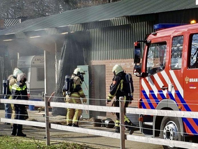 Meerdere biggetjes kwamen bij de brand om het leven.