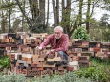 Wilde bijen: check of je tuin gastvrij genoeg is voor deze prachtinsecten