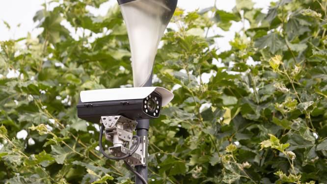 Mysterieuze camera's alweer weg uit straatje: 'Nu worden ze weer ergens anders geplaatst'