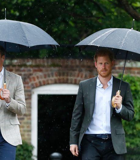 """Le prince Harry a parlé avec William et Charles, mais """"ces conversations n'ont pas été productives"""""""