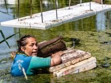 Kunstenares Karin zwemt zich een slag in de rondte om haar drijvende kunstwerk in Deventer af te maken