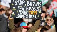 Meedenken over klimaatbeleid in Assenede? Milieuraad zoekt jou