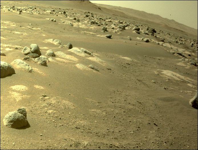 Deze foto van het Marsoppervlak liep eerder vandaag nog binnen.