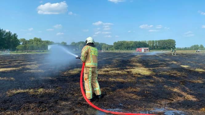 10.000 m² hooiland in brand: rookpluim kilometers ver te zien