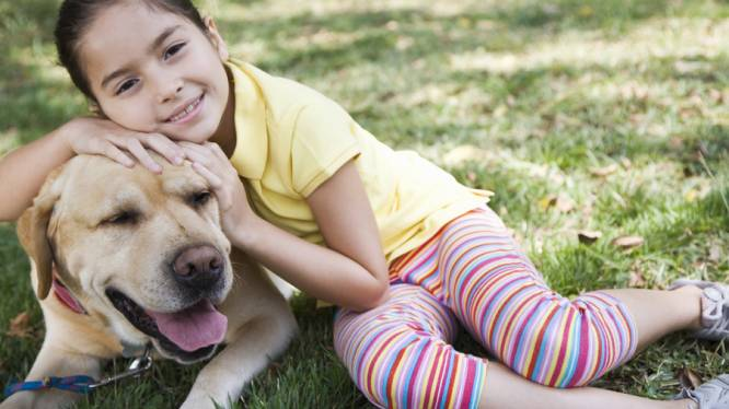 'Hond en kat beschermen je kind tegen astma'
