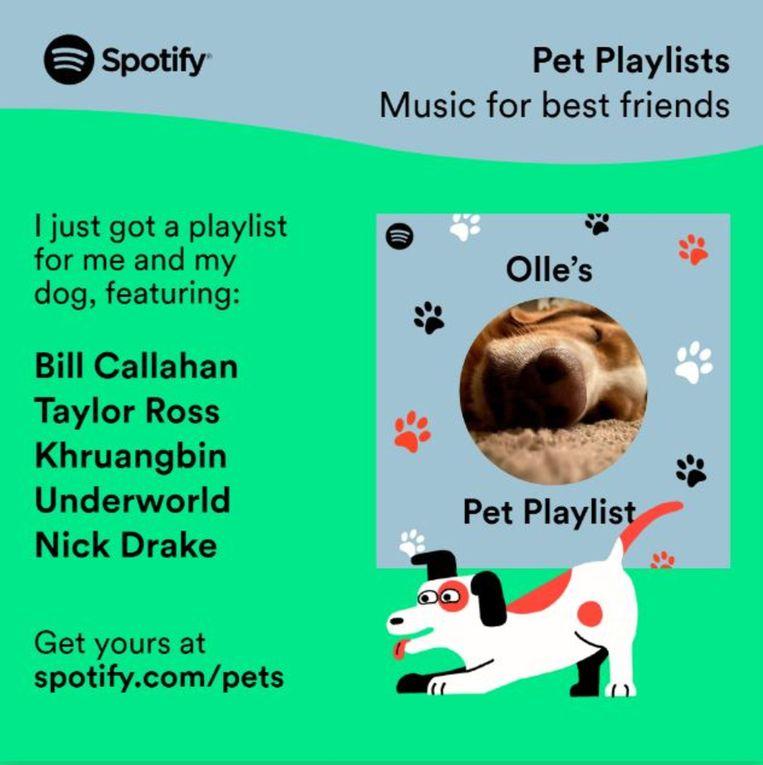 De playlist van de relaxte hond Olle. Beeld Spotify