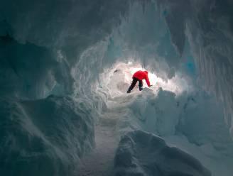 Warme grotten onder ijs Antarctica herbergen mogelijk nieuwe diersoorten
