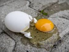 'Nieuwe rage?' Gorcumse politie opent jacht op eiergooiers