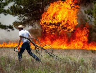 Honderden huizen verwoest door bosbranden in Colorado