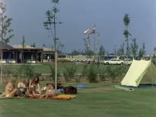 Camping De Berekuil: Toen groen gras nog een pleonasme was