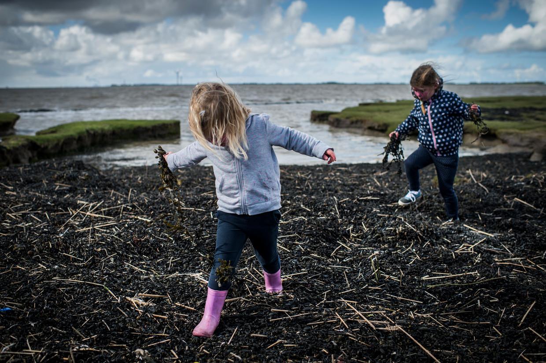 De natuur nodigt kinderen uit om vragen te stellen. Beeld Kees van de Veen