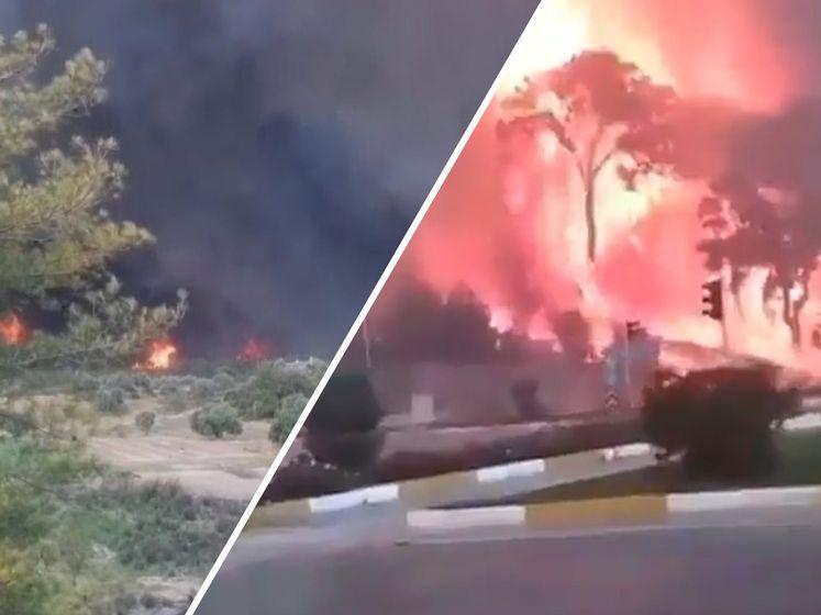 Heftige bosbranden naderen centrum Manavgat in Zuid-Turkije : inwoners op de vlucht