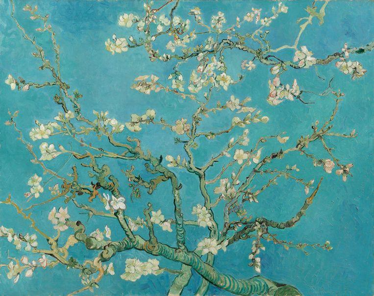 Vincent van Gogh, 1890 Beeld RV