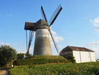 Ninoofse molens zetten deuren open tijdens Open Molendag