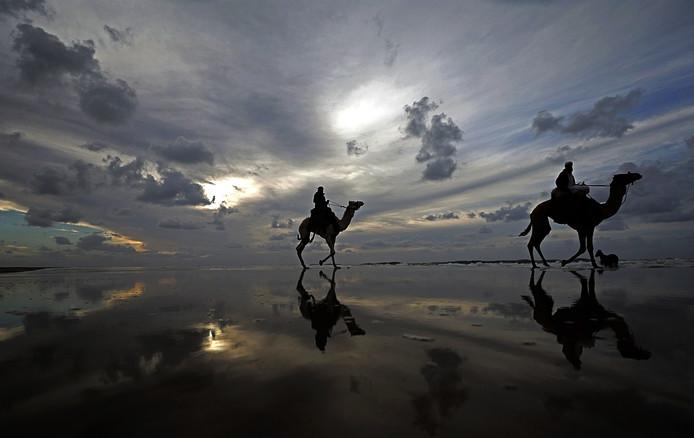 Palestijnse mannen rijden op hun kameel tijdens een lokale wedstrijd op het strand in West-Gazastad. Foto Mohammed Saber
