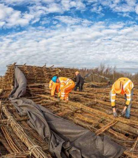 Wiepenrobot en langste boomgaard van Europa: Fruitdelta Rivierenland trekt de knip voor innovatieve projecten