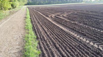 """""""Landbouwers eisen steeds meer houtkanten op"""""""
