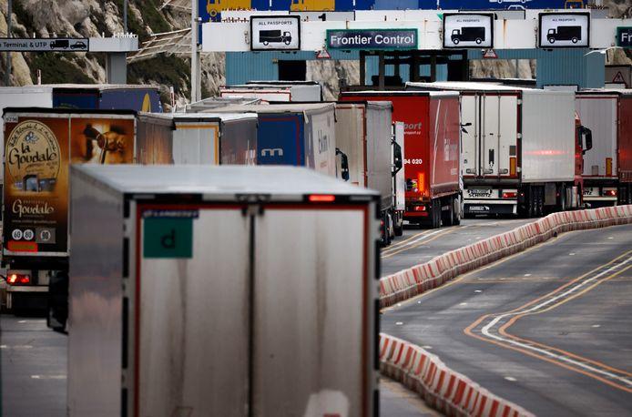 Vrachtwagens vormen een file voor de grenscontrole in de haven van Dover.
