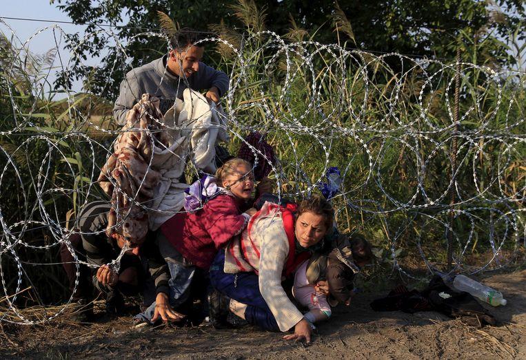 Syrische vluchtelingen aan de grens tussen Hongarije en Servië. Beeld REUTERS