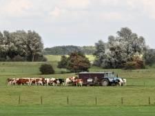 Honderden projecten in Gelderland in gevaar door stikstof