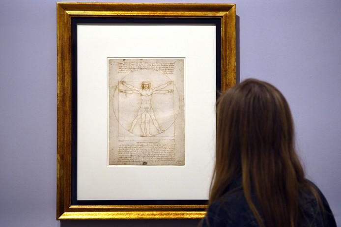 """L'Italie a accepté de prêter au Louvre plusieurs dessins dont le célèbre """"Homme de Vitruve""""."""
