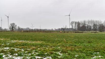 Stad in beroep tegen vergunning nieuwe windturbine Hoogveld